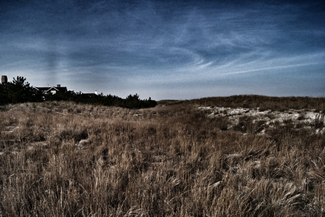 Dunes and grass at 73rd street VB