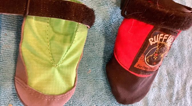 Ruffwear Boots have Arrived