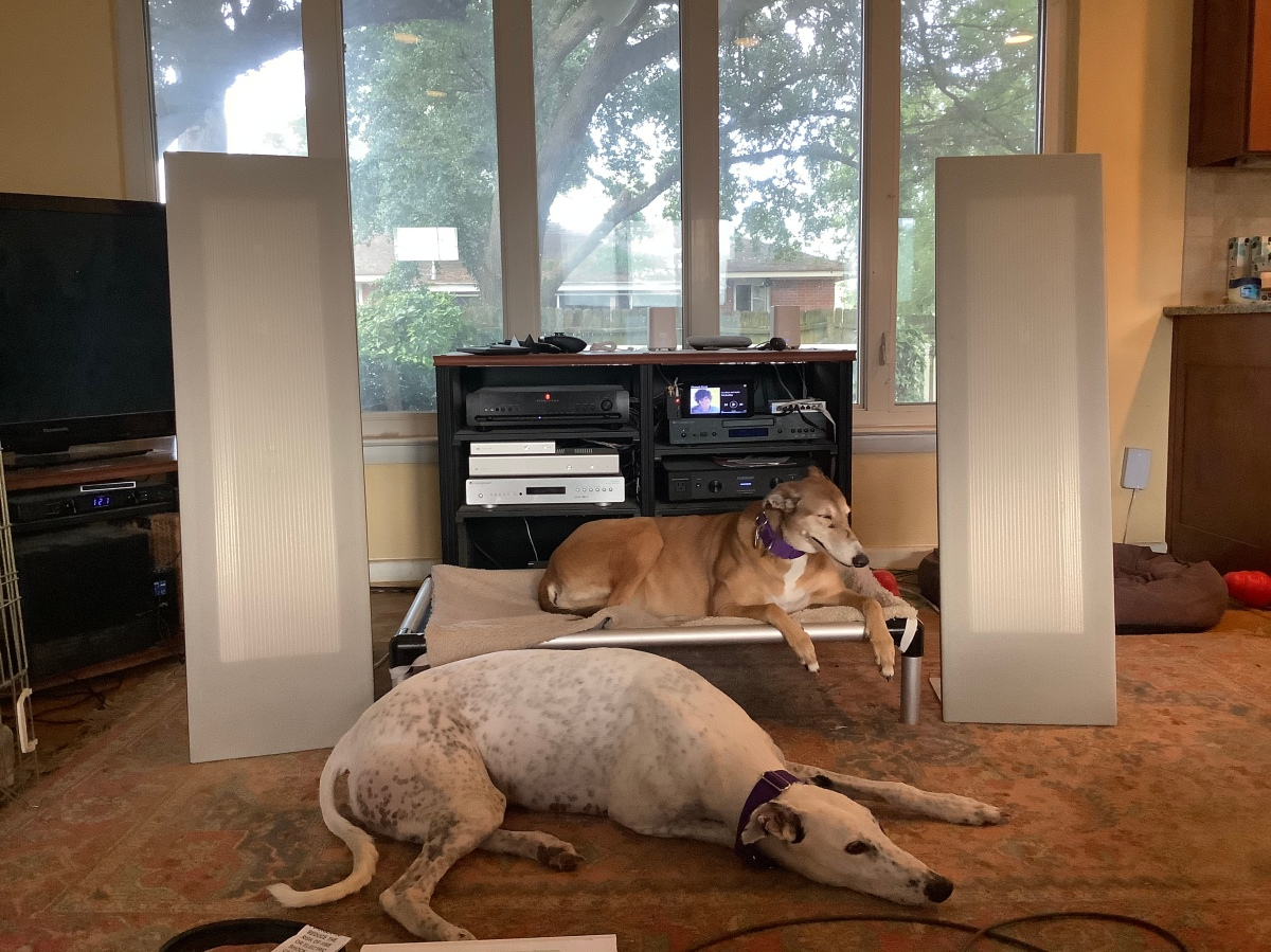 Rocky and Missy listen to afternoon jazz